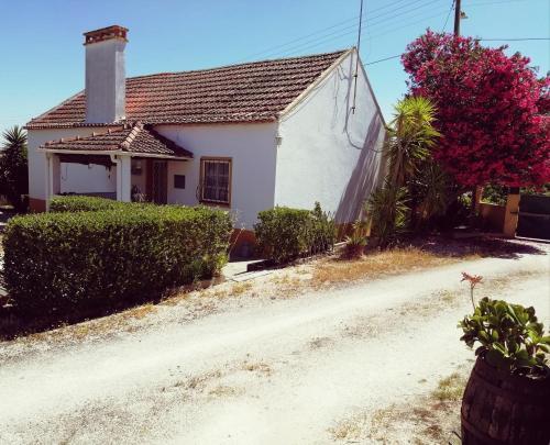 Casa da Aldeia, Coruche