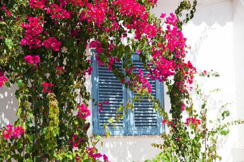 A Sunny Blue Villa in the Algarve, Portimão
