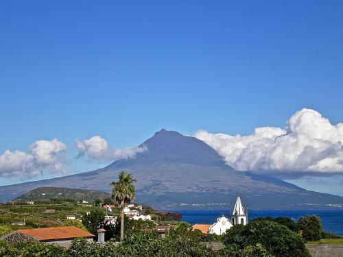 Azores vintage bed & breakfast, Horta