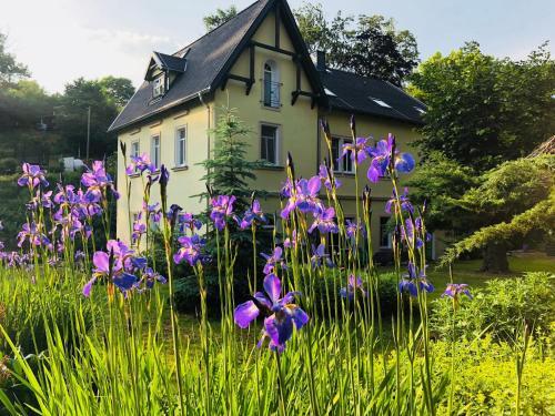 Ferienwohnungen Siebenlehn am Romanus Freibad, Mittelsachsen