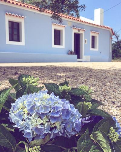 Monte Alentejano a 15 min da praia, Costa Vicentina, Santiago do Cacém