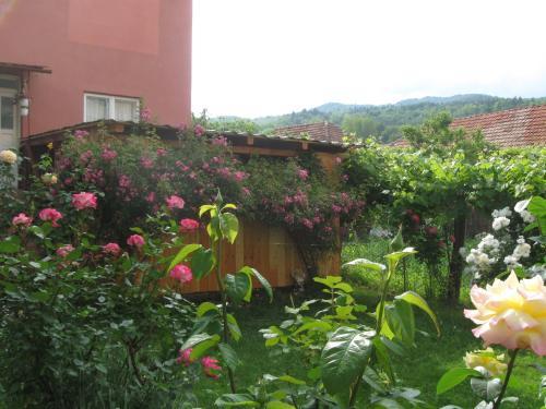 Casa Fabrizio, Calimanesti