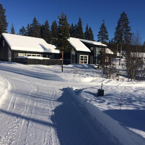 Julandia 4 bedroom cabin Hemsedal, Gol
