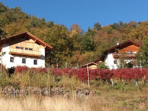 Außerperskolerhof - Adults only, Bolzano