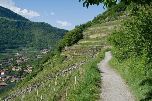 Lausenbergerhof, Bolzano