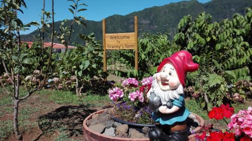 Granny's farm, São Vicente