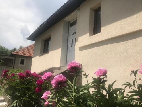 Guest house Kolasin,