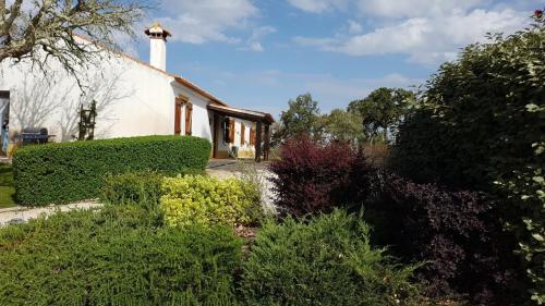 The Cootage Villa, Monte Alto D'Aravia, Sousel