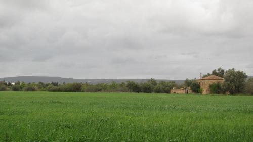 Casa da Fonte, Albufeira