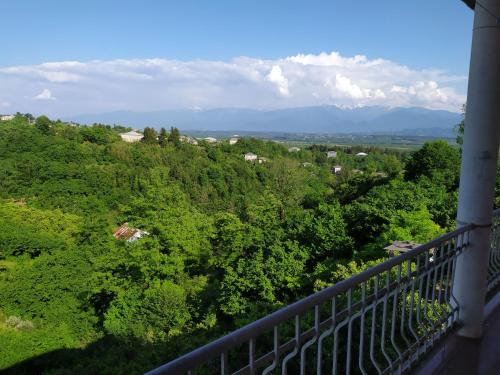 Ozurgeti - Natanebi - Ureki Rd Дом для отпуска, Ozurgeti