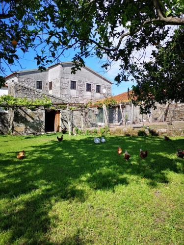 Regina - Perre Rural House, Viana do Castelo
