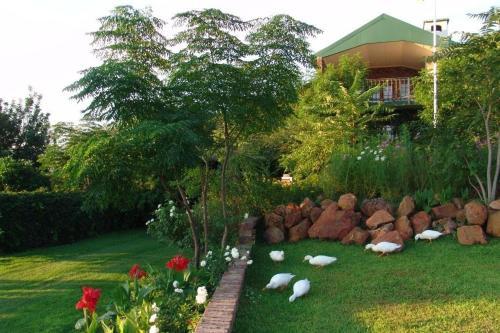 Frida's Guesthouse, Pixley ka Seme