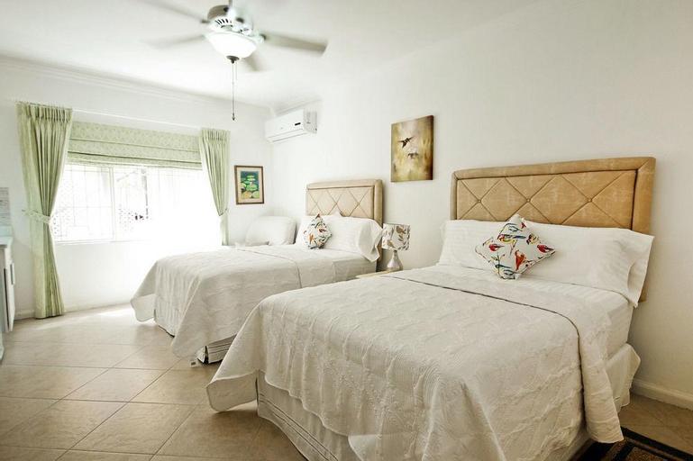 Cattleya's Green Suite Exquisite,