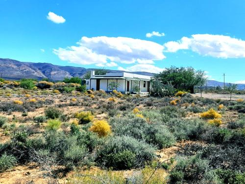 Rietfontein Nature Reserve, Central Karoo