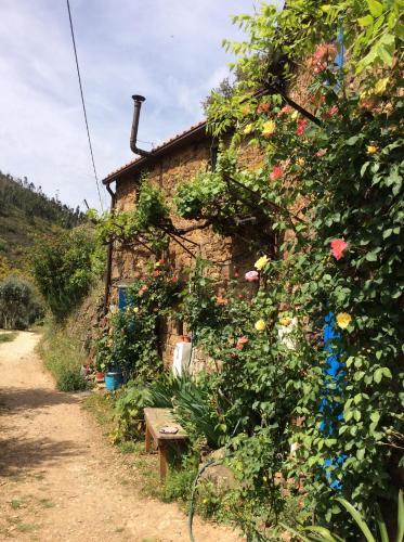Guest Room B&B Agro-turismo Quinta da Fonte, Figueiró dos Vinhos