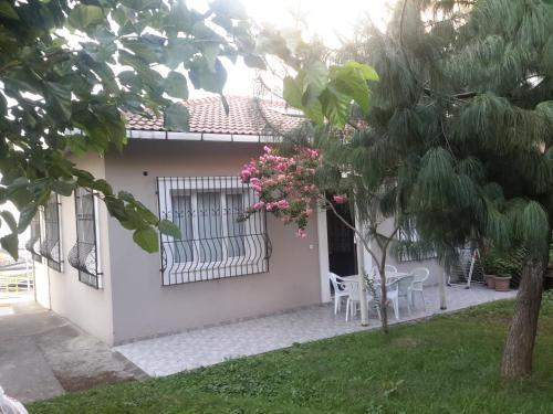 Summer House, Arsin