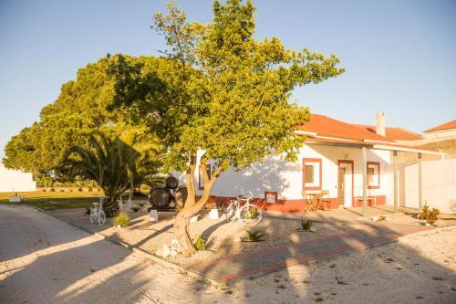 Casa das Pipas #3, Palmela