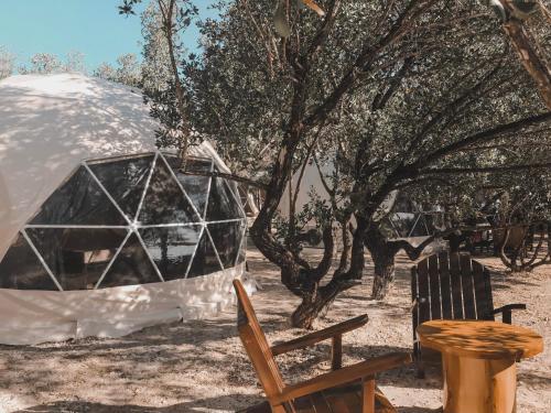 Aquamare Beach Camp Resort, Larena