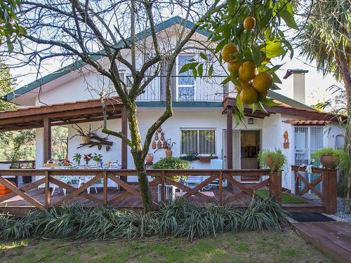 Charming House in Arouca - Casa do Campo da Vinha, Arouca
