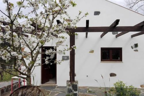 Casa da Tileira, Penacova