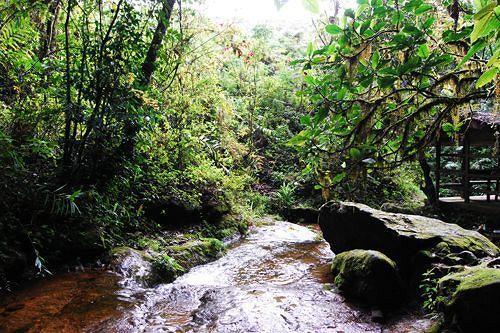 Obudu Mountain Resort, Kwande