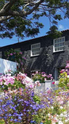 Casa do Zé - AL, Velas