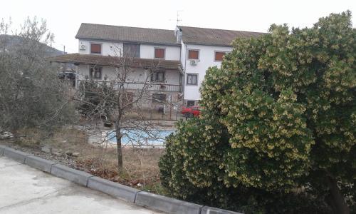 Casa de Algoso, Vimioso