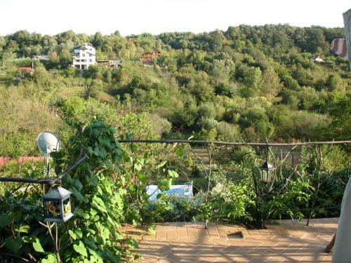 Casa de vacanta, Bucovat