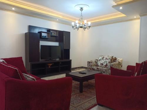 شقه مفروشه القاهره (عباس العقاد), Nasr City 1