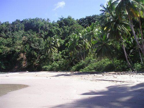Dominica's Sea View Apartment,