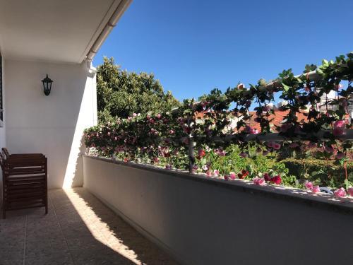 Bing Garden Guesthouse, Lisboa