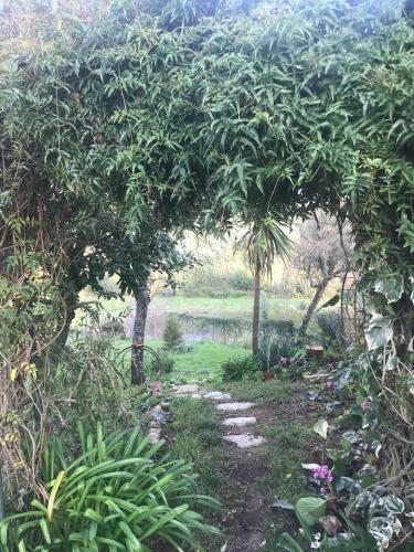 Quinta do Pereiro, Venda do Porco - 40.314837N 7.985658W, Tábua