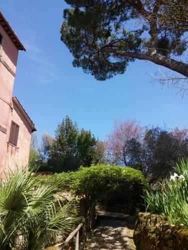 My Old House in Borgo, Viterbo