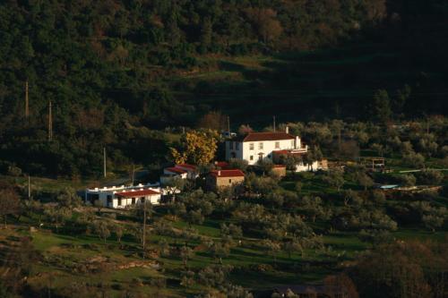 Dominio Vale do Mondego, Guarda