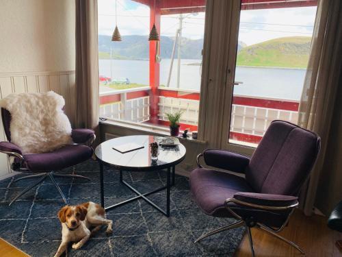 Kamøyvær-North Cape, Bed & Breakfast, Nordkapp