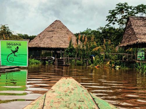 Iguana Lodge Peru, Maynas