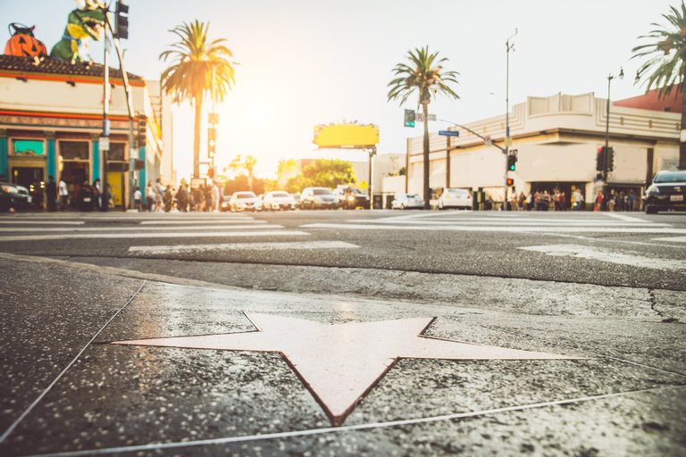 1087 - Hollywood Contemporary Retreat - RUD 113240, Los Angeles