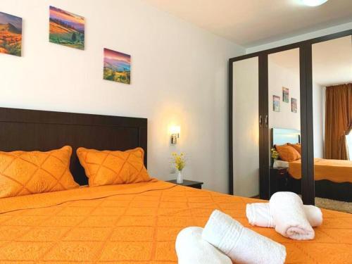 Alma 3-room modern and renovated apartment, Iasi