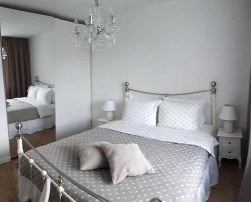 Luxuriously decorated comfortable apartment, Gandaki