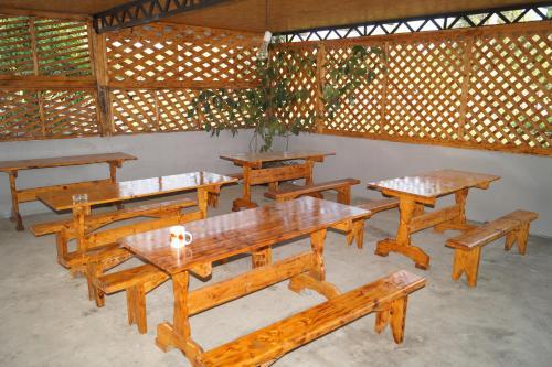 Private sector, Gagra
