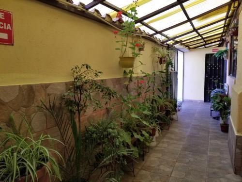 Hostal D' Carlos, Riobamba
