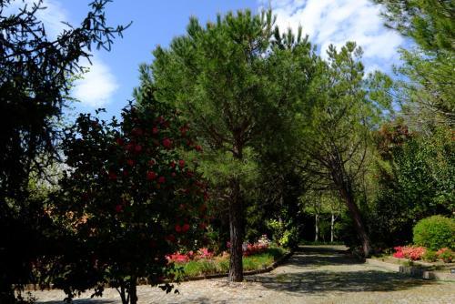 Quinta das Fragas, Baião