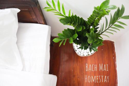 Bach Mai Homestay, Đống Đa