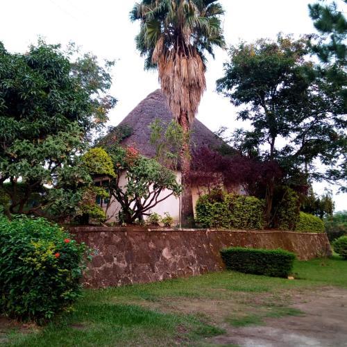 VICTORIA GARDENS & SAFARIS, Bunyaruguru