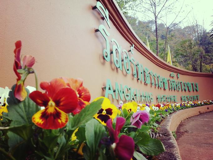 Angkhang Nature Resort, Fang