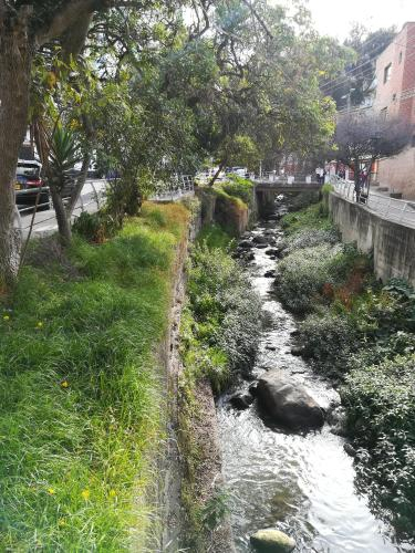 Paseo del Rio, Pamplona