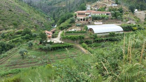 Woodland Retreat, Figueiró dos Vinhos
