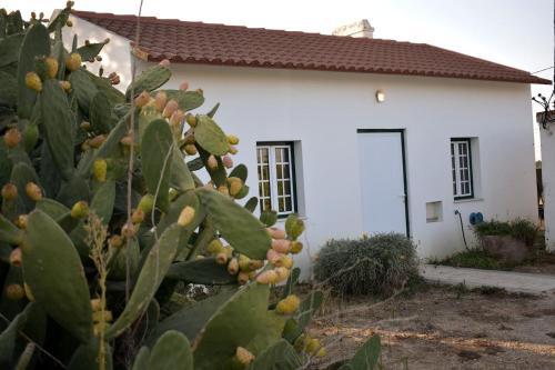Quinta da Vinha, Palmela