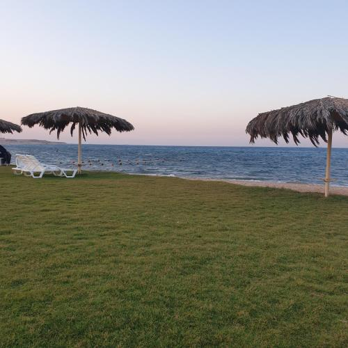 My paradise, 'Ataqah