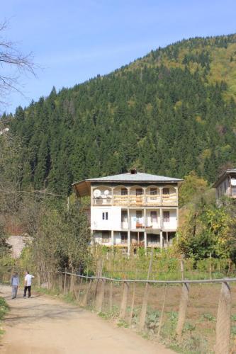 Guest House Mareti, Shuakhevi